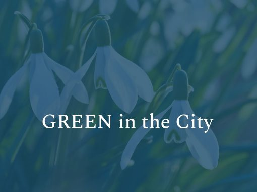 GREEN in the CITY